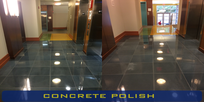 concretepolish21